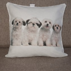 Decorative pillowcase Puppies